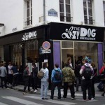 The Lazy Dog in Paris