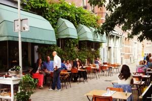 Zwaanshals in Rotterdam